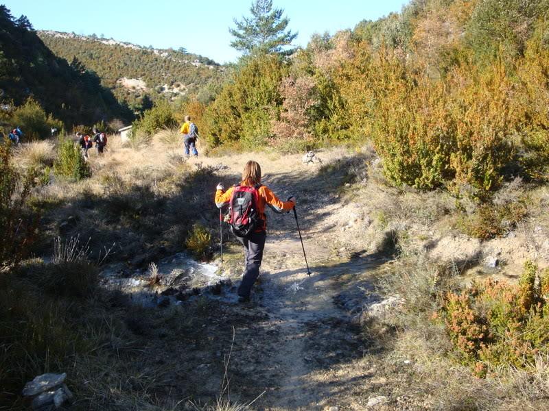 Pico Humión 1.434m. y Pico Flor  1.340m. HUMIN199