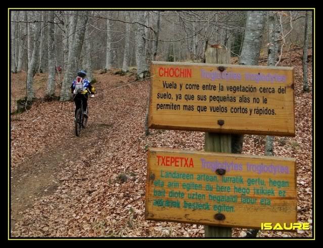 Monte Jauden 1.038m. desde Peñacerrada DSC08959