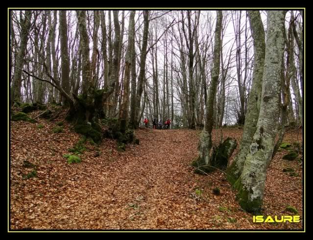 Monte Jauden 1.038m. desde Peñacerrada DSC08968