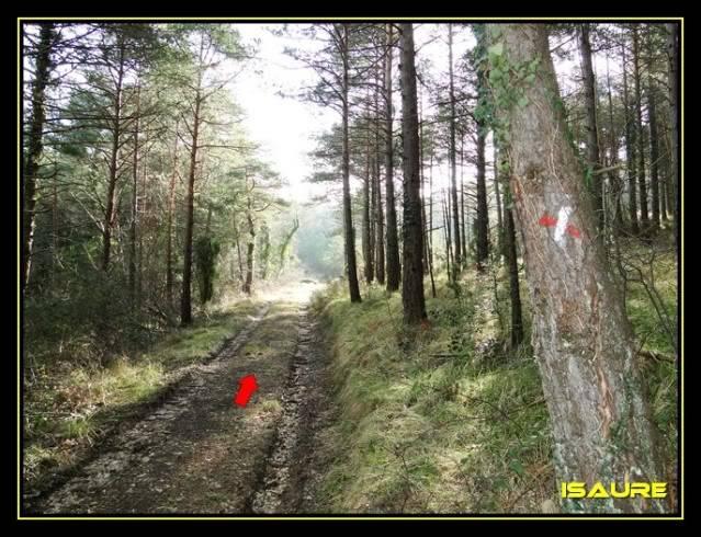 Peña Karria 1.130m. Por el Frontal de Las Tablas DSC09522