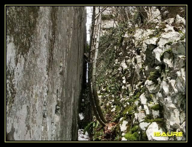 Peña Karria 1.130m. Por el Frontal de Las Tablas DSC09551