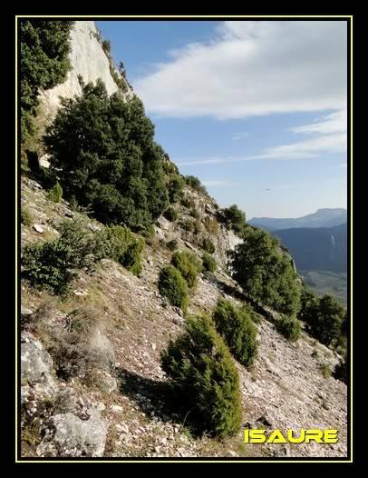 Peña Karria 1.130m. Por el Frontal de Las Tablas DSC09636