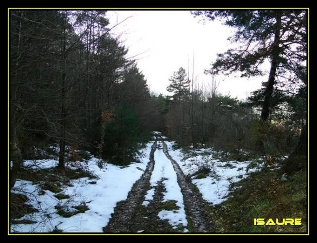 Peña Karria 1.130m. Por el Frontal de Las Tablas DSC09658