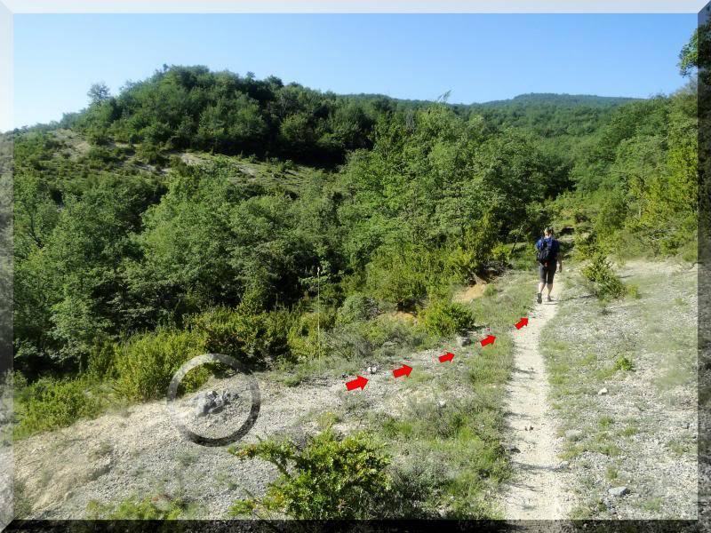 Muela 1.055m. y Gaztelua 867m. por caminos poco conocidos DSC02007