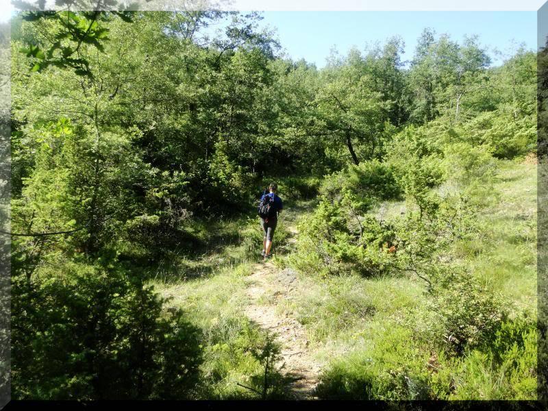 Muela 1.055m. y Gaztelua 867m. por caminos poco conocidos DSC02008