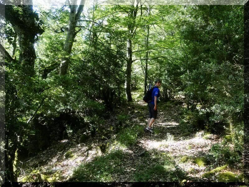 Muela 1.055m. y Gaztelua 867m. por caminos poco conocidos DSC02038