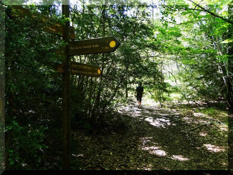 Muela 1.055m. y Gaztelua 867m. por caminos poco conocidos DSC02060