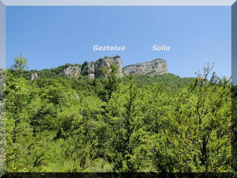 Muela 1.055m. y Gaztelua 867m. por caminos poco conocidos DSC02145