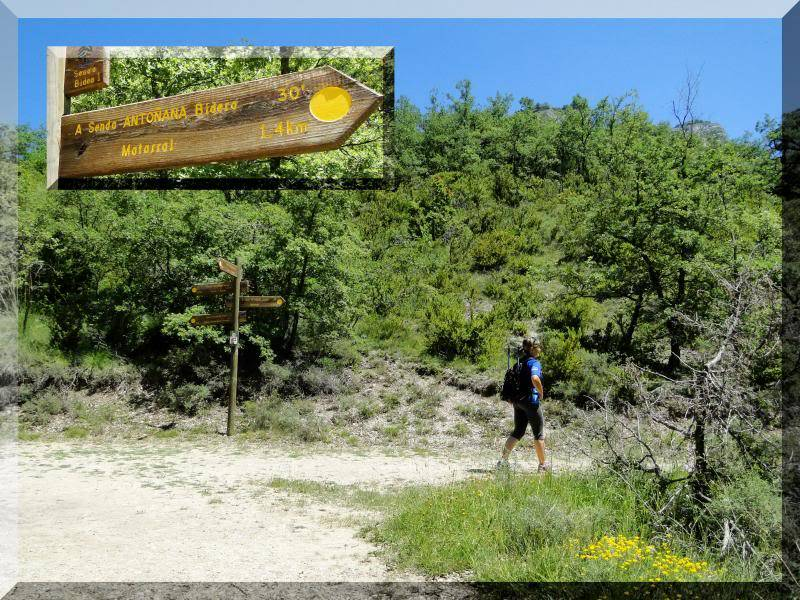 Muela 1.055m. y Gaztelua 867m. por caminos poco conocidos DSC02147