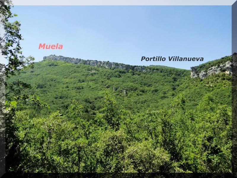 Muela 1.055m. y Gaztelua 867m. por caminos poco conocidos DSC02150