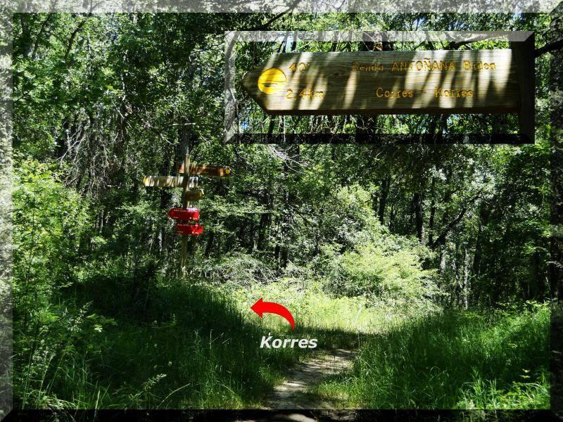 Muela 1.055m. y Gaztelua 867m. por caminos poco conocidos DSC02152