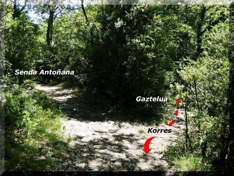 Muela 1.055m. y Gaztelua 867m. por caminos poco conocidos DSC02201