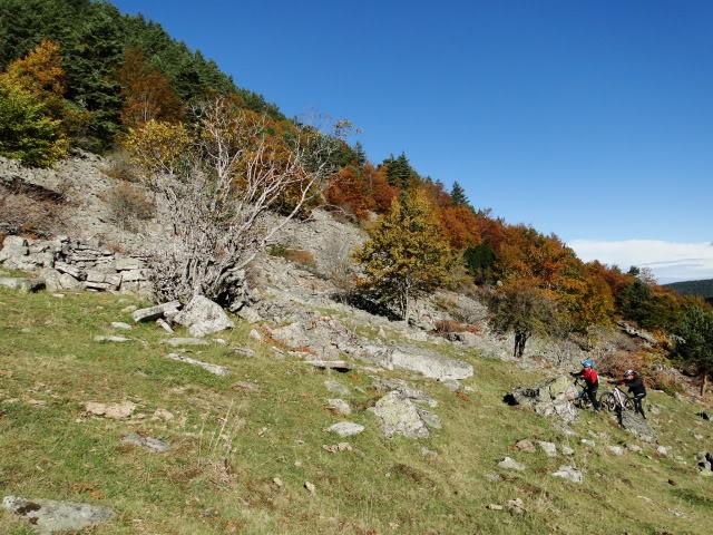 Pico Buey 2.034m. desde Villoslada de Cameros DSC05916