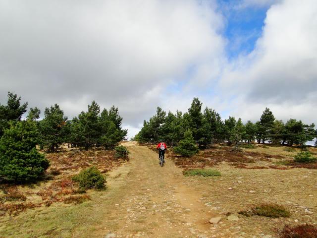 Pico Buey 2.034m. desde Villoslada de Cameros DSC05955