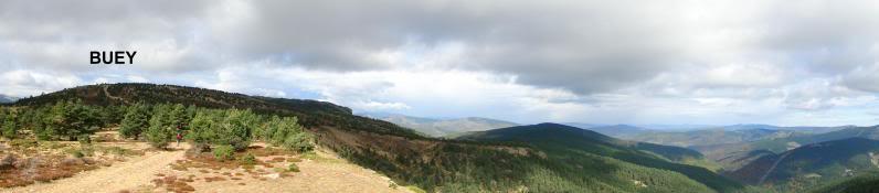Pico Buey 2.034m. desde Villoslada de Cameros DSC05959-1