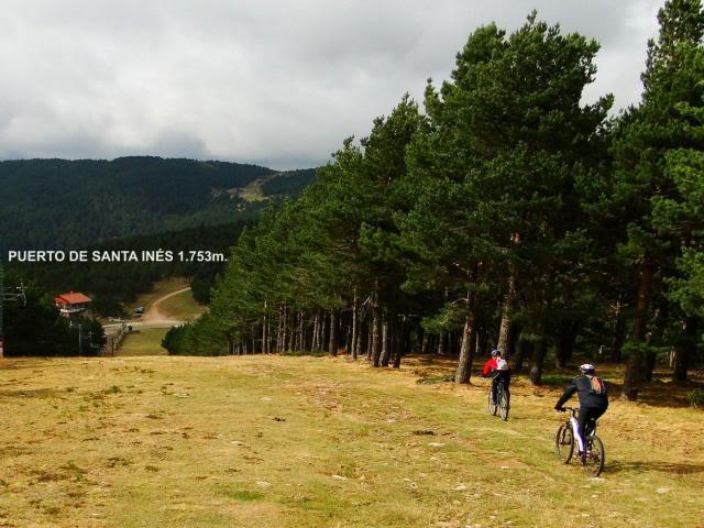 Pico Buey 2.034m. desde Villoslada de Cameros DSC05984