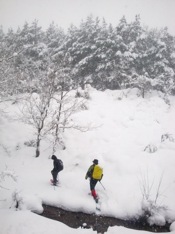 Pico de La Churra 1.498m. desde Quintanilla del Rebollar LACHURRA046