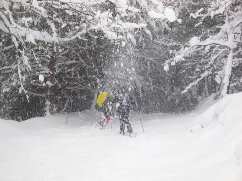 Pico de La Churra 1.498m. desde Quintanilla del Rebollar LACHURRA049
