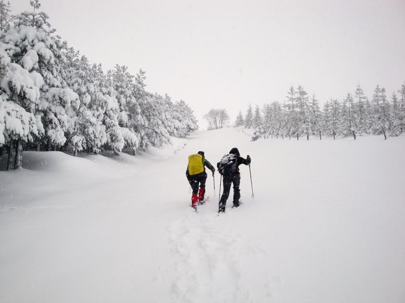 Pico de La Churra 1.498m. desde Quintanilla del Rebollar LACHURRA100