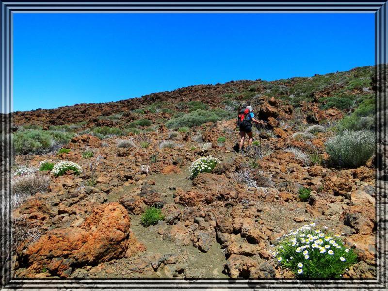 Pico Viejo 3.134m. (Tenerife) 26
