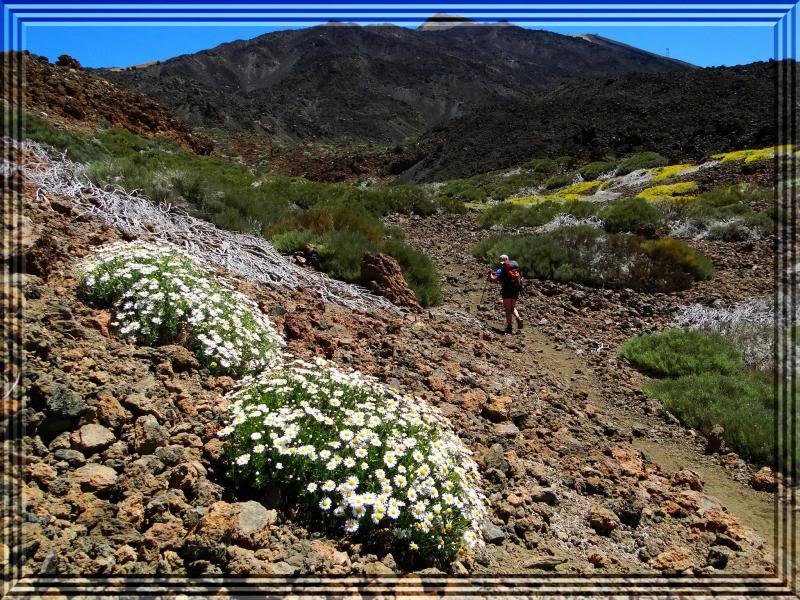 Pico Viejo 3.134m. (Tenerife) 27