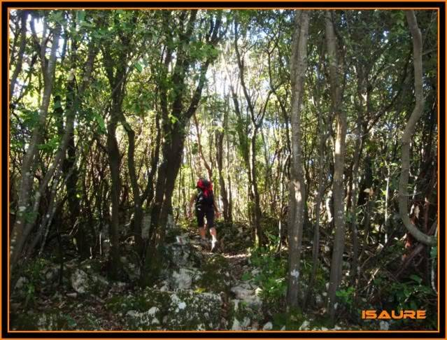 (Ogoño) Atxukulu 305m. Talaia 276m. desde Elantxobe OGOO050