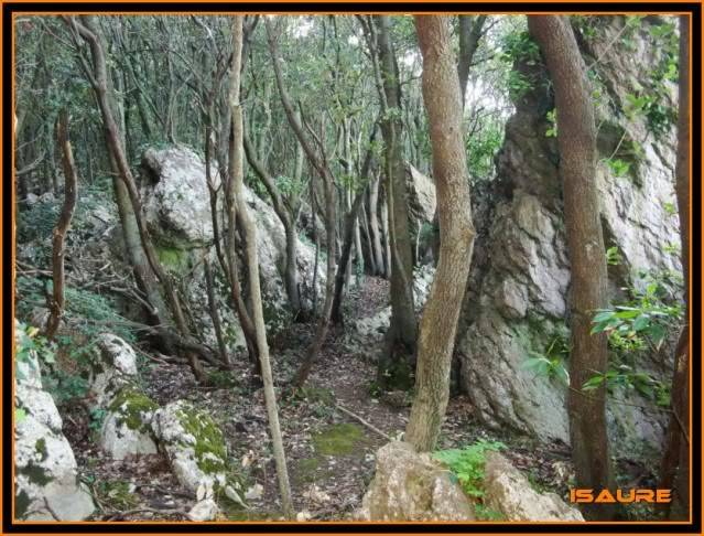 (Ogoño) Atxukulu 305m. Talaia 276m. desde Elantxobe OGOO066