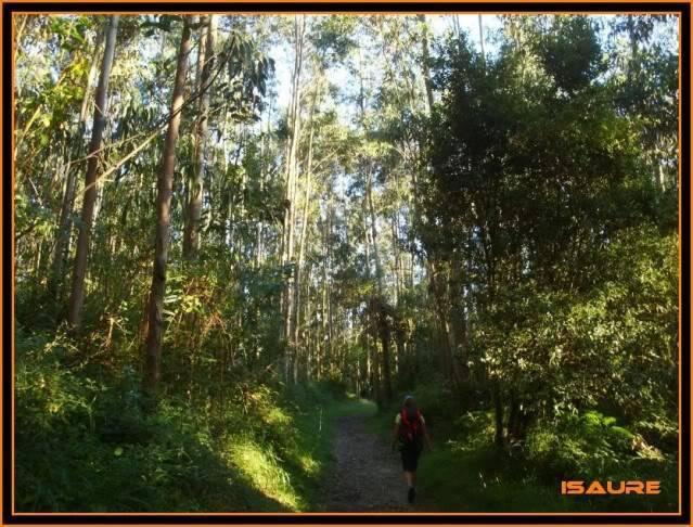 (Ogoño) Atxukulu 305m. Talaia 276m. desde Elantxobe OGOO104