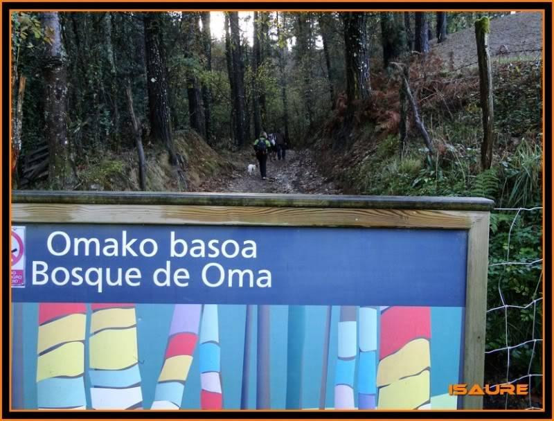 Ereñozar 448m. y Bosque Pintado de Oma DSC09846