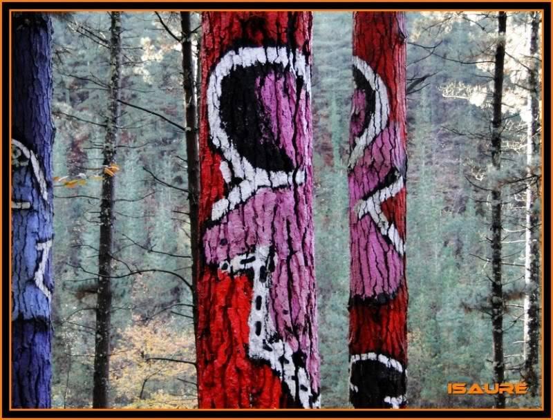Ereñozar 448m. y Bosque Pintado de Oma DSC09871