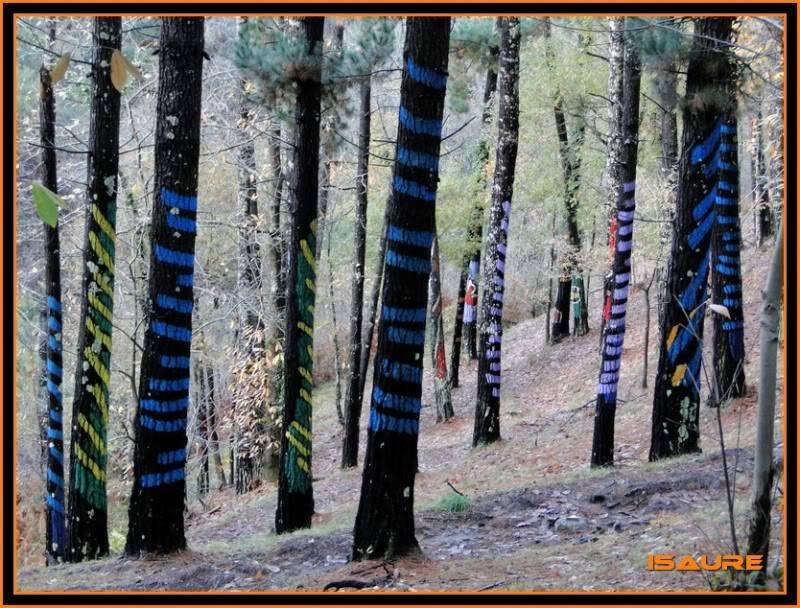 Ereñozar 448m. y Bosque Pintado de Oma DSC09876