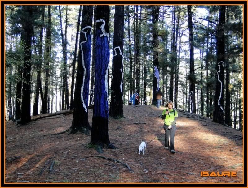 Ereñozar 448m. y Bosque Pintado de Oma DSC09879