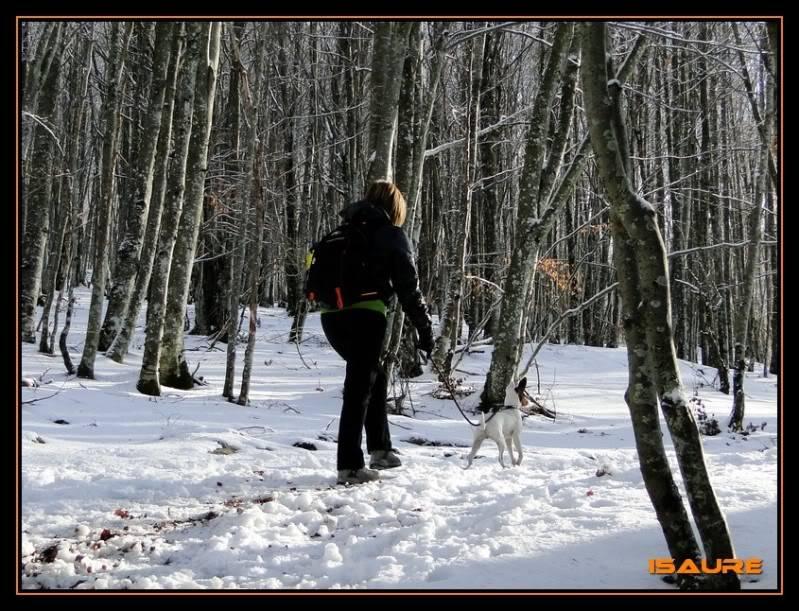 Gorostiaran 1.292m. (Sierra de Aizkorri) DSC09420