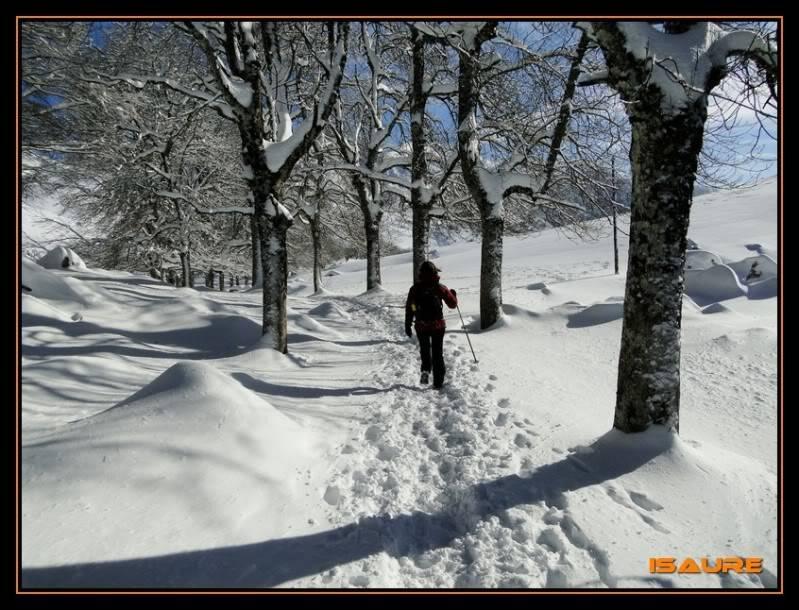 Gorostiaran 1.292m. (Sierra de Aizkorri) DSC09434