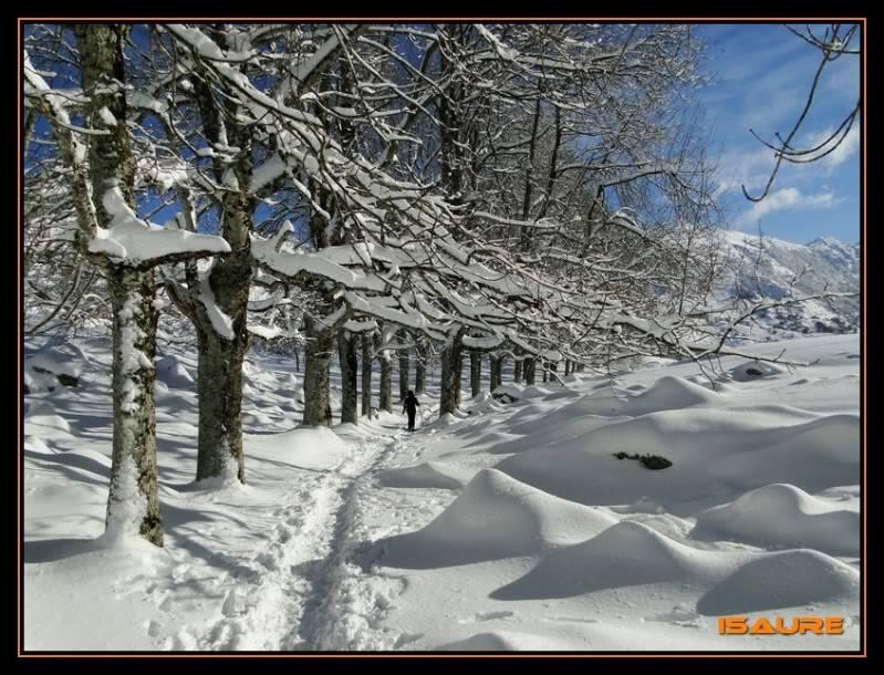 Gorostiaran 1.292m. (Sierra de Aizkorri) DSC09435