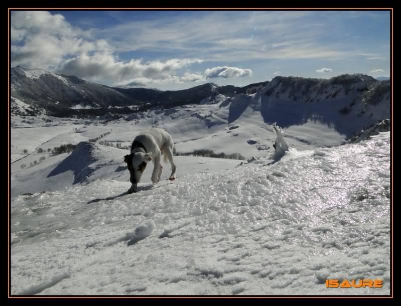 Gorostiaran 1.292m. (Sierra de Aizkorri) DSC09491