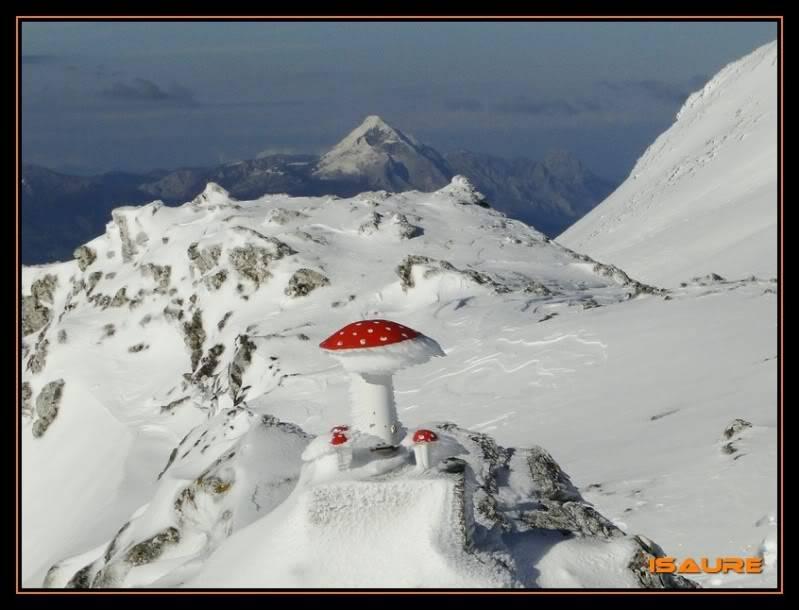 Gorostiaran 1.292m. (Sierra de Aizkorri) DSC09499