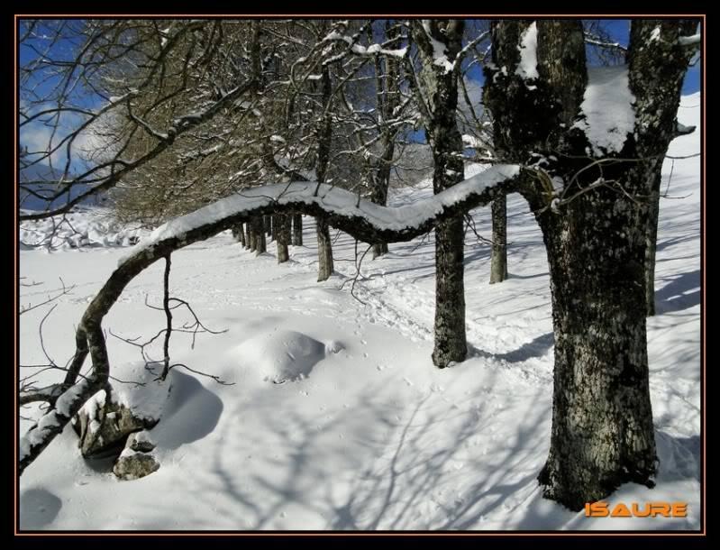 Gorostiaran 1.292m. (Sierra de Aizkorri) DSC09557