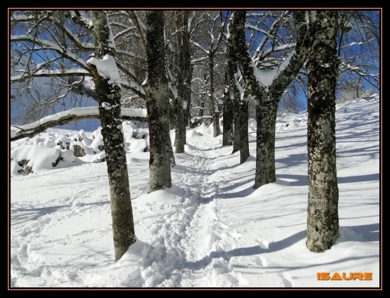 Gorostiaran 1.292m. (Sierra de Aizkorri) DSC09560