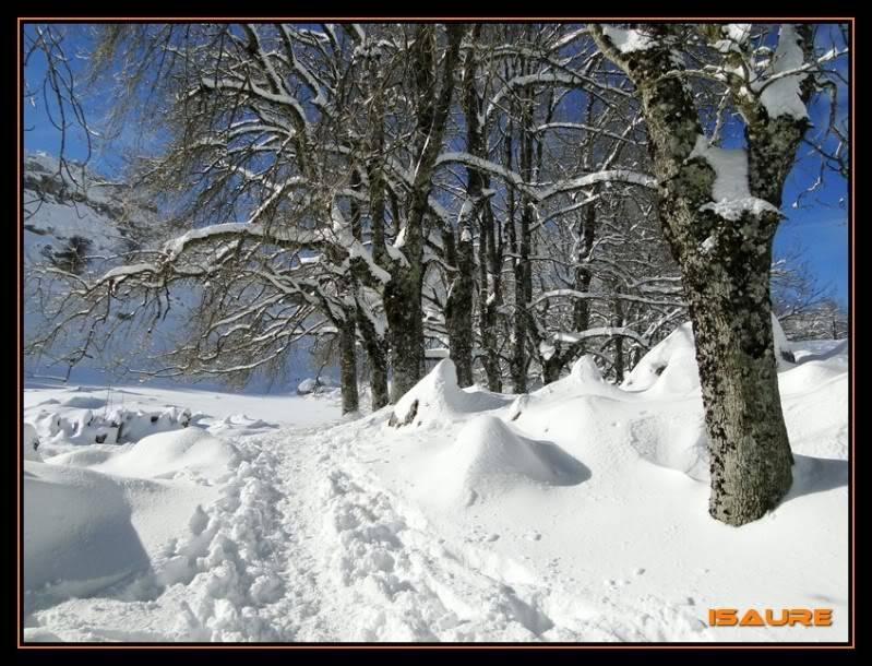Gorostiaran 1.292m. (Sierra de Aizkorri) DSC09561