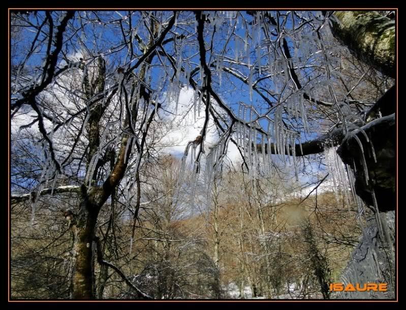 Gorostiaran 1.292m. (Sierra de Aizkorri) DSC09573