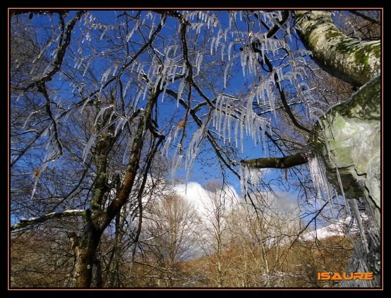 Gorostiaran 1.292m. (Sierra de Aizkorri) DSC09582