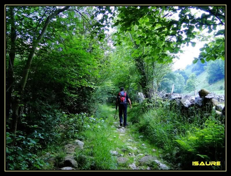 Peña Rocias 1.338m. y Mortillano 1.411m. desde el Valle de Asón DSC00020