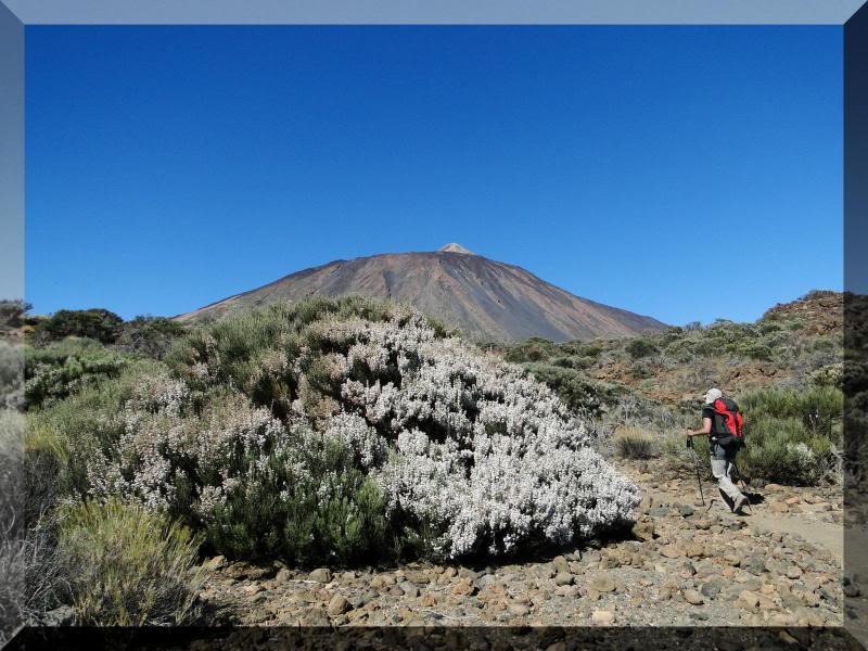 Teide 3.718m. desde la playa del Socorro 40