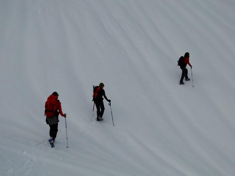 Pico Valdominguero 2.265m. desde Jito de Escarandi DSC07440