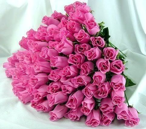 Cvetna oaza - Page 9 PinkRoses