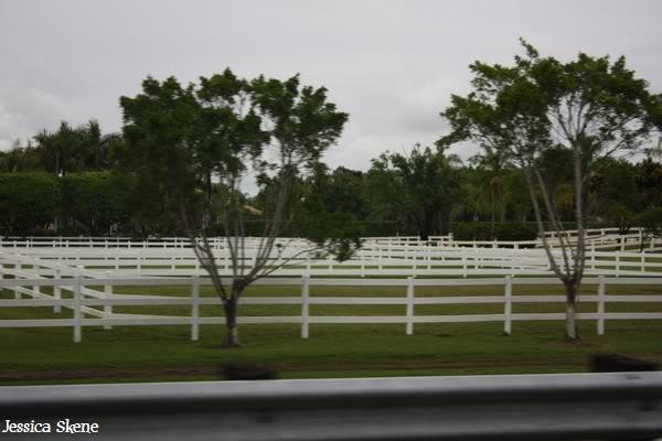 19 mars 2009, CSI 5* winter equestrian festival, west palm b IMG_3289