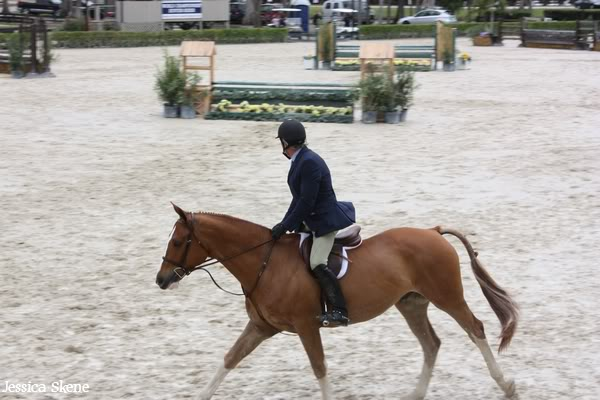 19 mars 2009, CSI 5* winter equestrian festival, west palm b IMG_3308