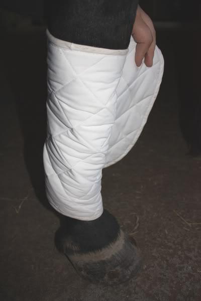 Les bandages IMG_4190