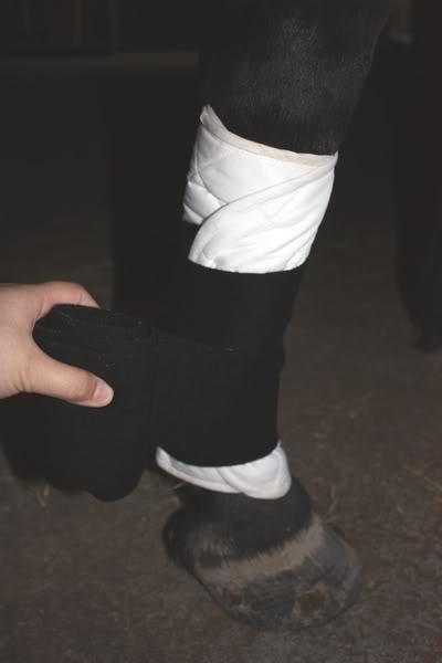 Les bandages IMG_4192